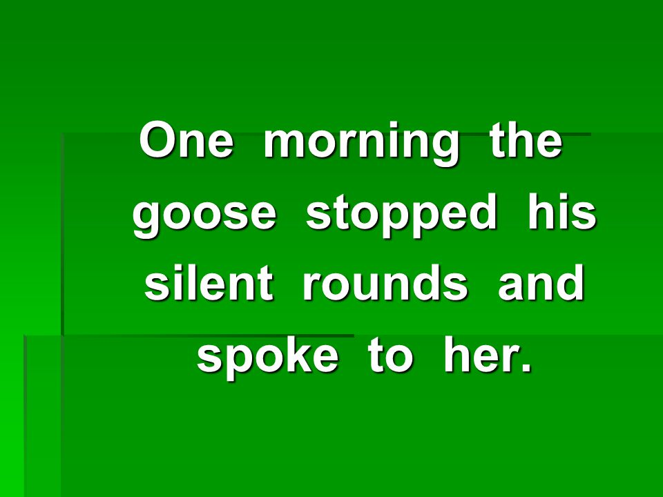 One morning the goose stopped his goose stopped his silent rounds and silent rounds and spoke to her.