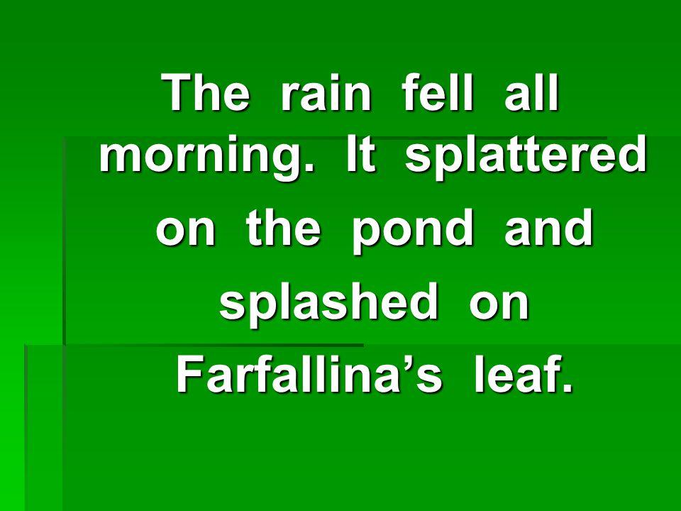 The rain fell all morning.