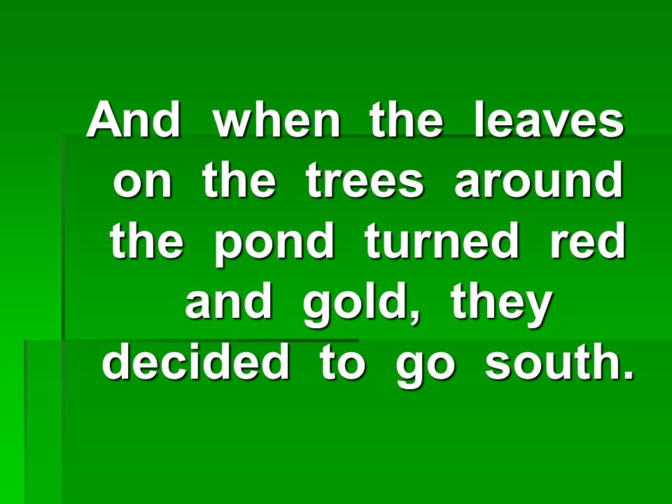 And when the leaves on the trees around the pond turned red and gold, they decided to go south.