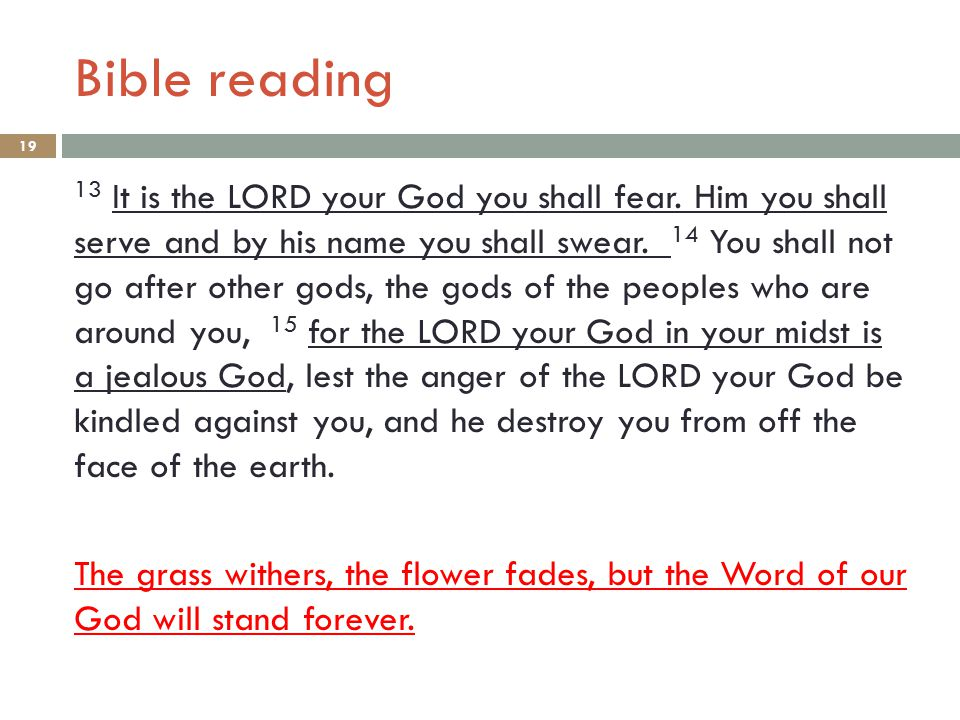 Bible reading 19 13 It is the LORD your God you shall fear. Him you shall serve and by his name you shall swear. 14 You shall not go after other gods,