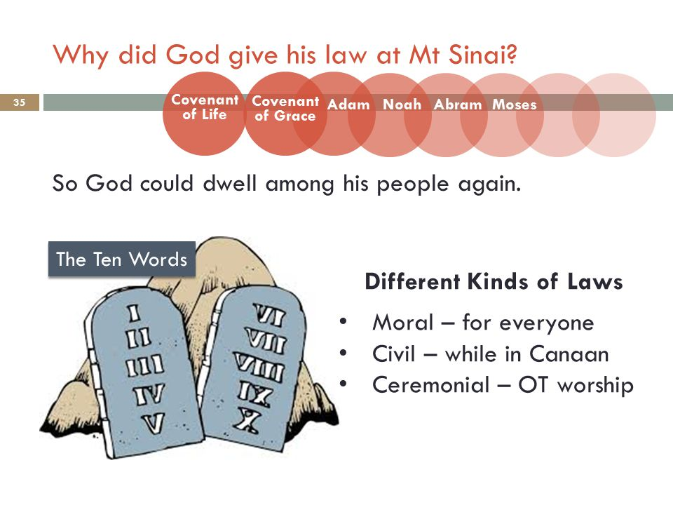 Why did God give his law at Mt Sinai. 35 So God could dwell among his people again.