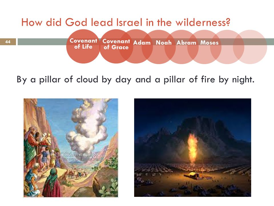 How did God lead Israel in the wilderness? 44 By a pillar of cloud by day and a pillar of fire by night. Covenant of Life Adam Covenant of Grace NoahA