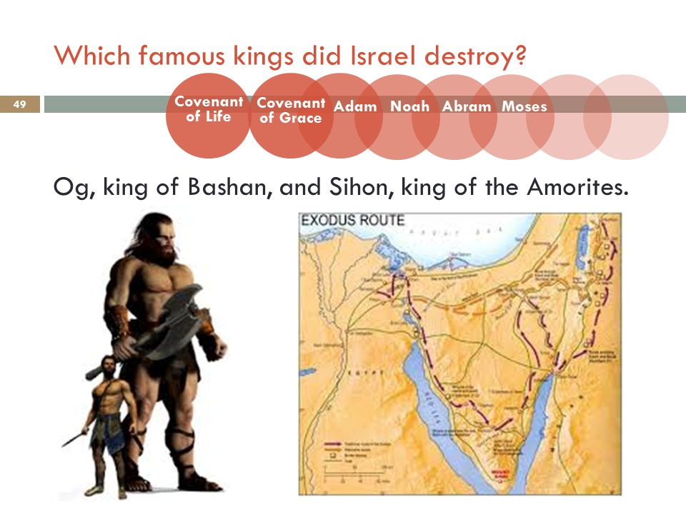 Which famous kings did Israel destroy. 49 Og, king of Bashan, and Sihon, king of the Amorites.