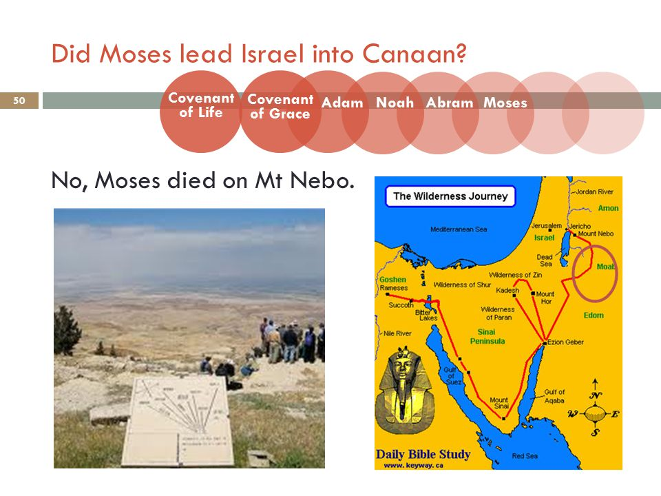 Did Moses lead Israel into Canaan.50 No, Moses died on Mt Nebo.