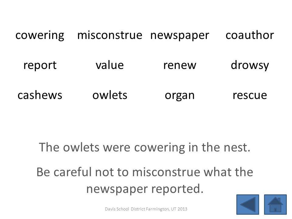 coweringmisconstruenewspapercoauthor reportvaluerenewdrowsy cashewsowletsorganrescue The owlets were cowering in the nest. Be careful not to misconstr