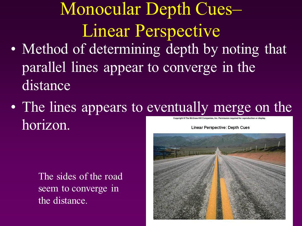 Monocular Depth Cues– Linear Perspective Method of determining depth by noting that parallel lines appear to converge in the distance The lines appear