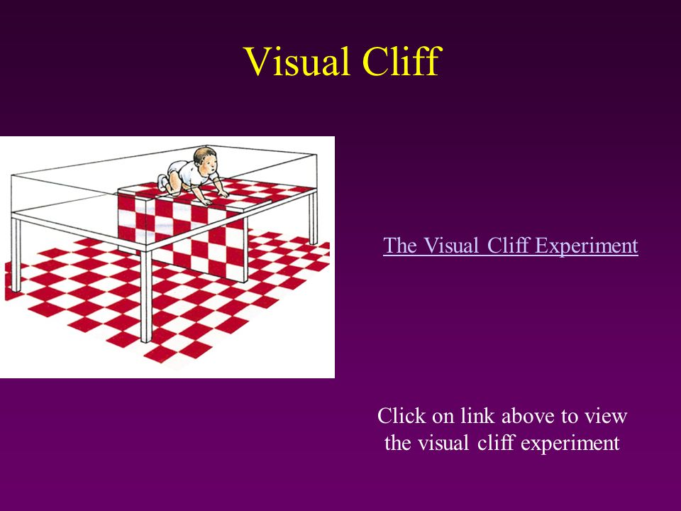 Visual Cliff Click on link above to view the visual cliff experiment The Visual Cliff Experiment
