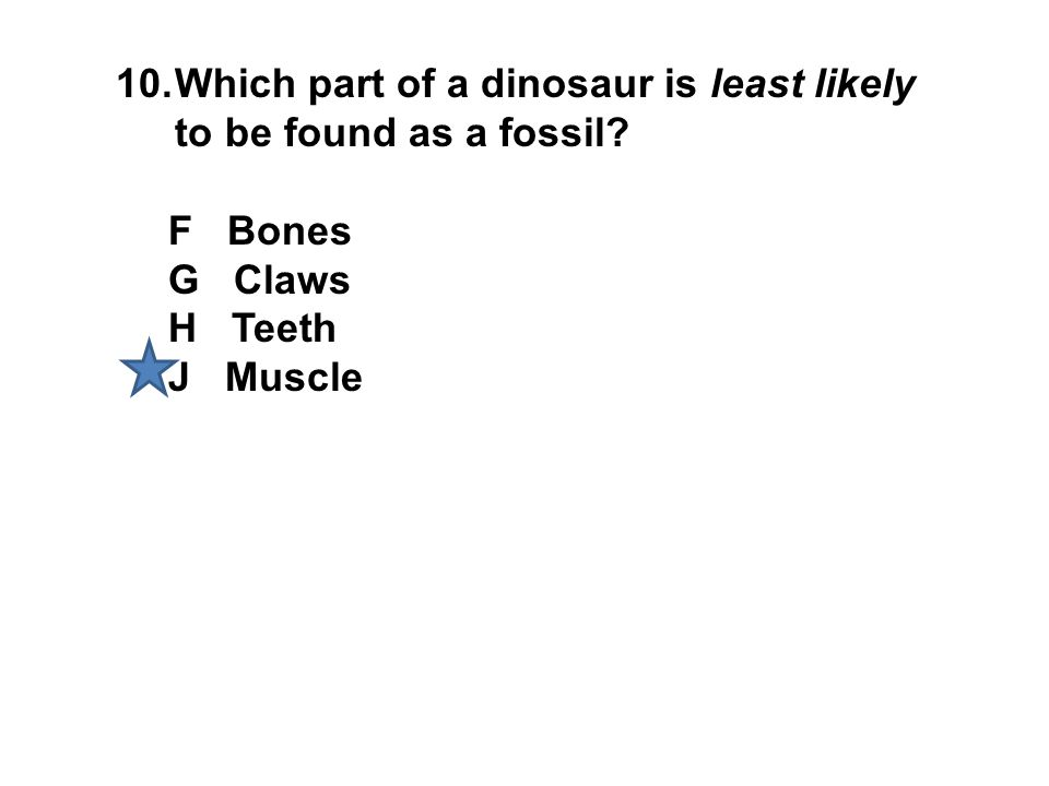 10.Which part of a dinosaur is least likely to be found as a fossil? F Bones G Claws H Teeth J Muscle