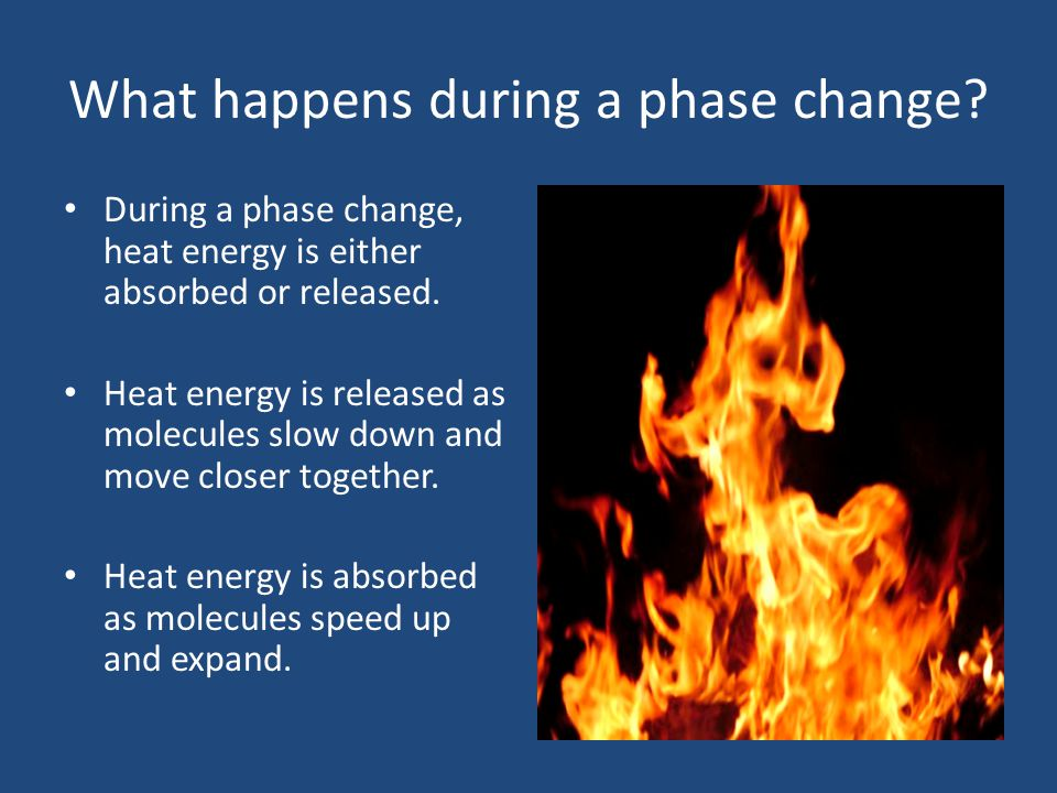 What happens during a phase change? During a phase change, heat energy is either absorbed or released. Heat energy is released as molecules slow down