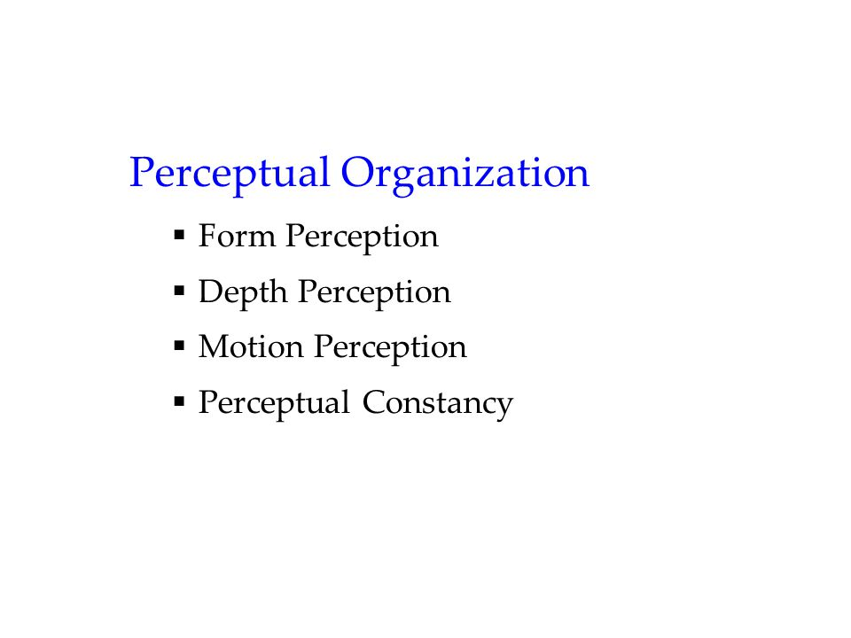 Perceptual Organization  Form Perception  Depth Perception  Motion Perception  Perceptual Constancy