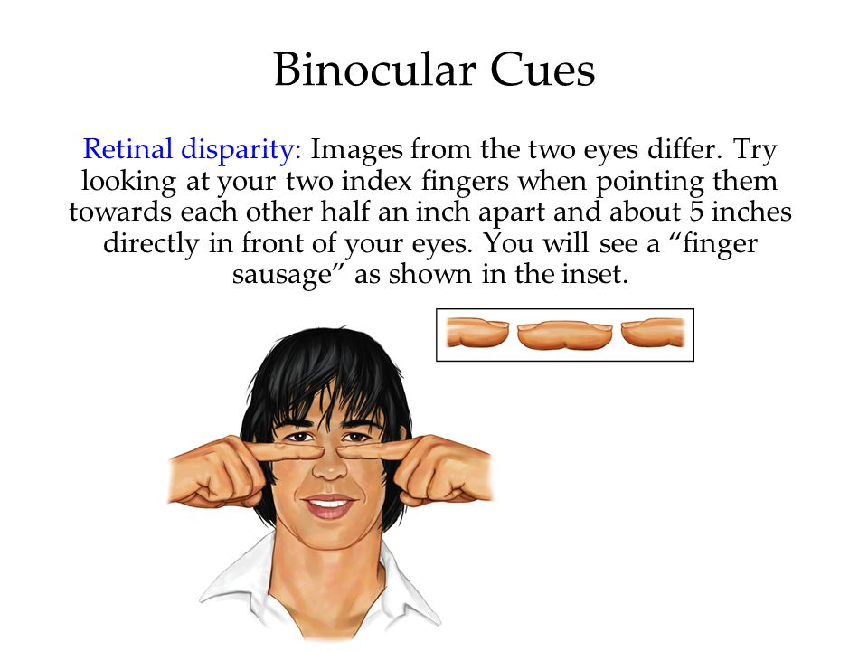 Binocular Cues Retinal disparity: Images from the two eyes differ.