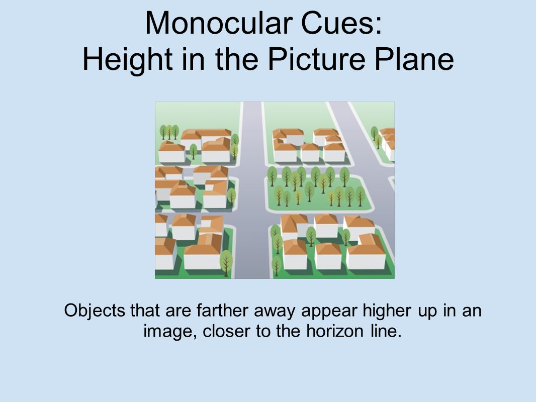 Monocular Cues: Height in the Picture Plane Objects that are farther away appear higher up in an image, closer to the horizon line.