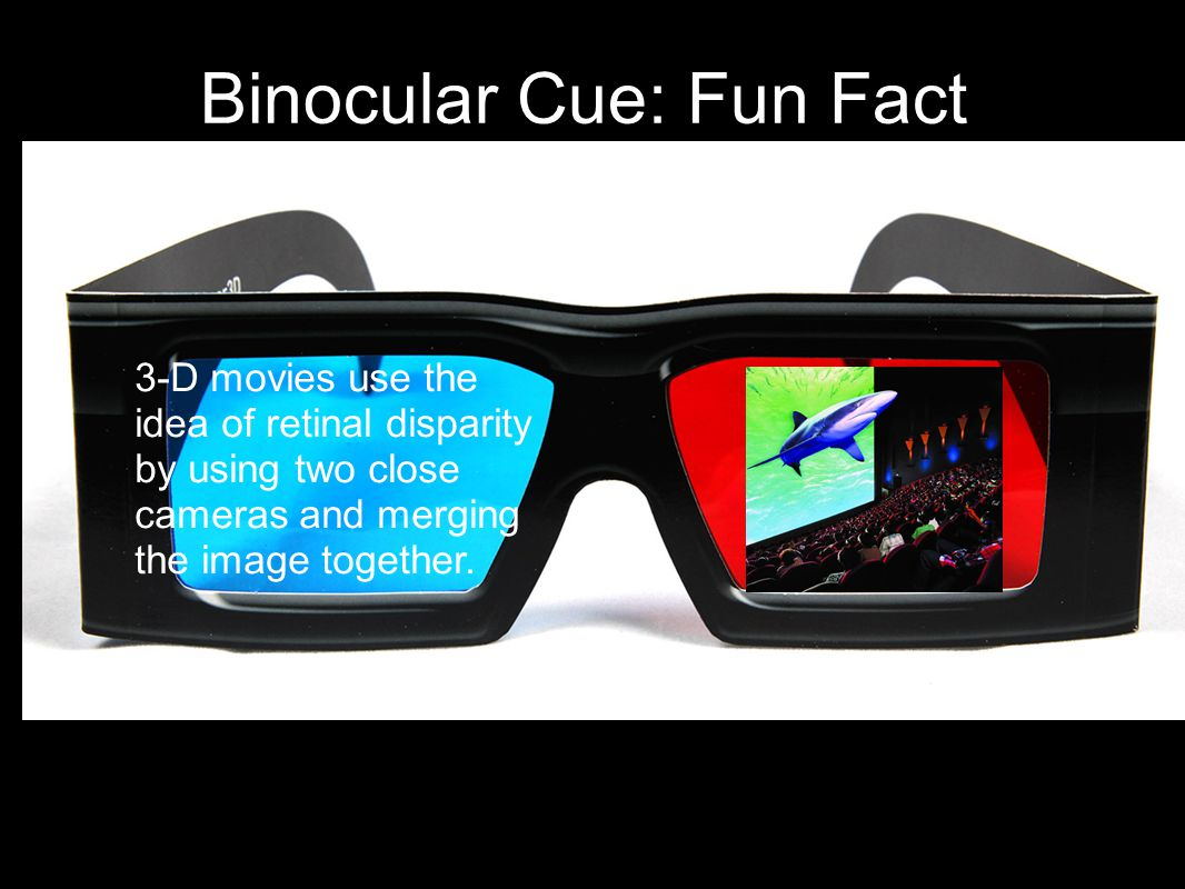 Binocular Cue: Fun Fact 3-D movies use the idea of retinal disparity by using two close cameras and merging the image together.