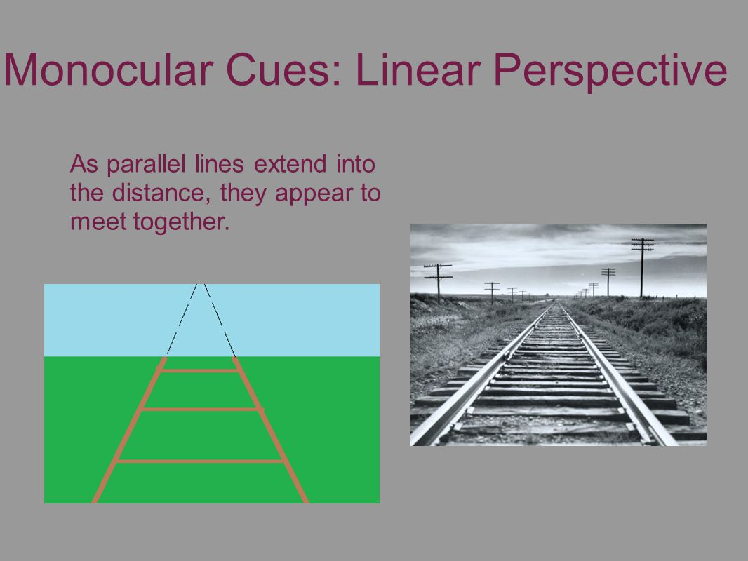 Monocular Cues: Linear Perspective As parallel lines extend into the distance, they appear to meet together.