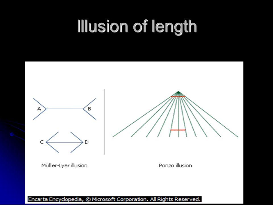 Illusion of length
