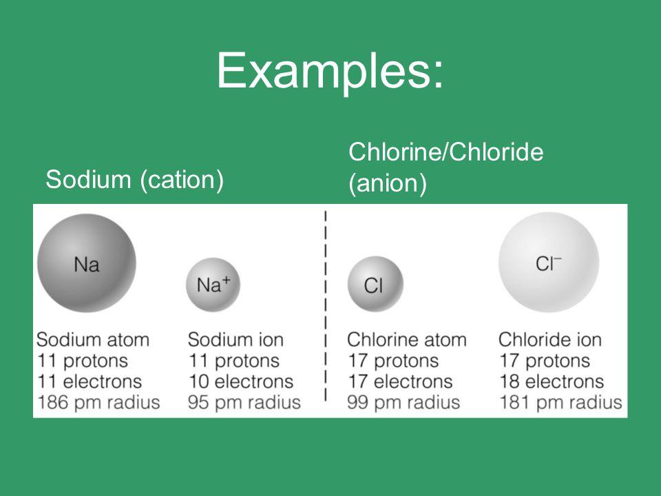 Examples: Sodium (cation) Chlorine/Chloride (anion)