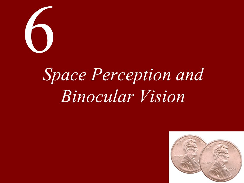 Chapter 6 Space Perception and Binocular Vision Monocular Cues to Three-Dimensional Space Binocular Vision and Stereopsis Combining Depth Cues Development of Binocular Vision and Stereopsis