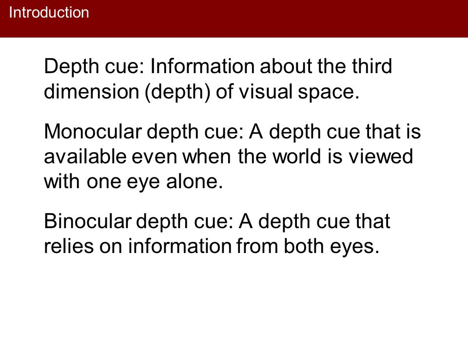 Introduction Depth cue: Information about the third dimension (depth) of visual space. Monocular depth cue: A depth cue that is available even when th
