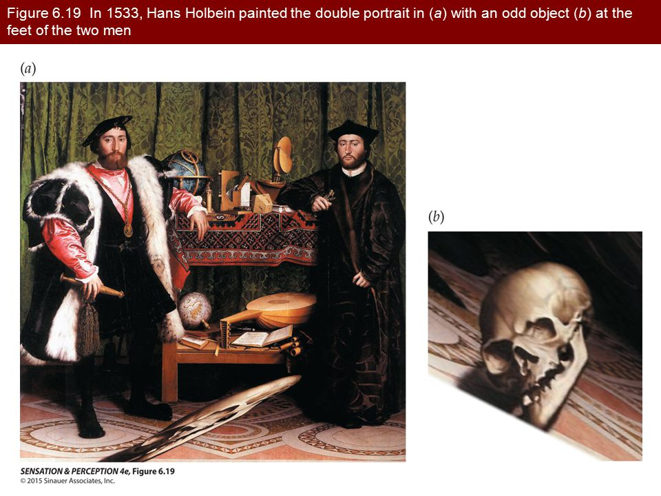 Figure 6.19 In 1533, Hans Holbein painted the double portrait in (a) with an odd object (b) at the feet of the two men
