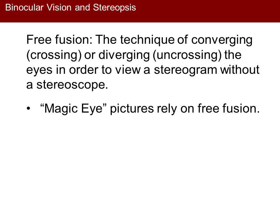 Binocular Vision and Stereopsis Free fusion: The technique of converging (crossing) or diverging (uncrossing) the eyes in order to view a stereogram w