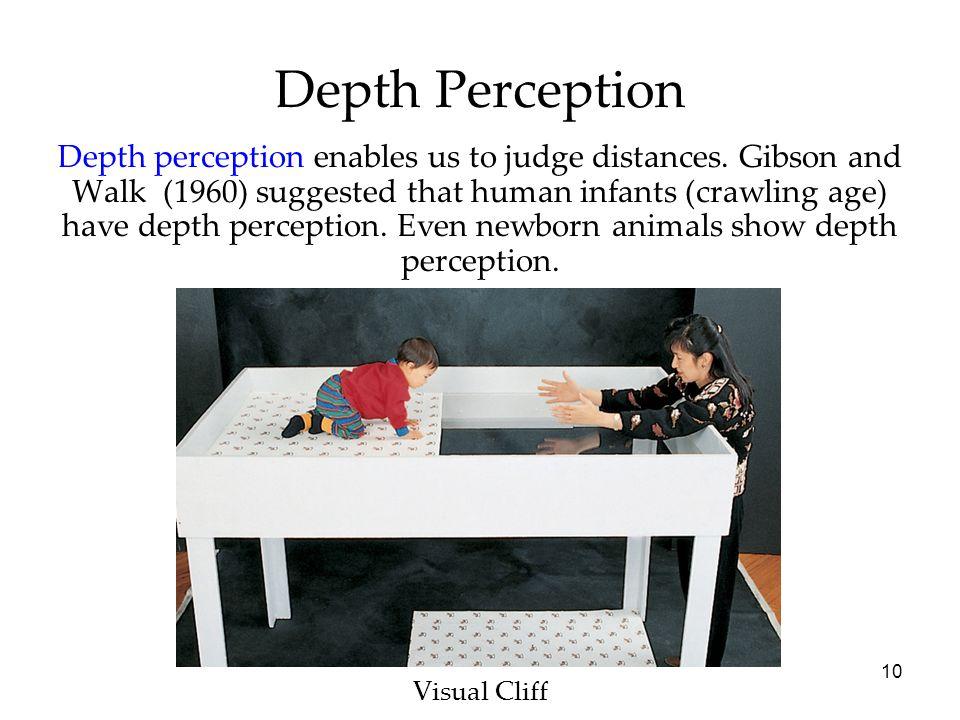 10 Depth Perception Visual Cliff Depth perception enables us to judge distances.