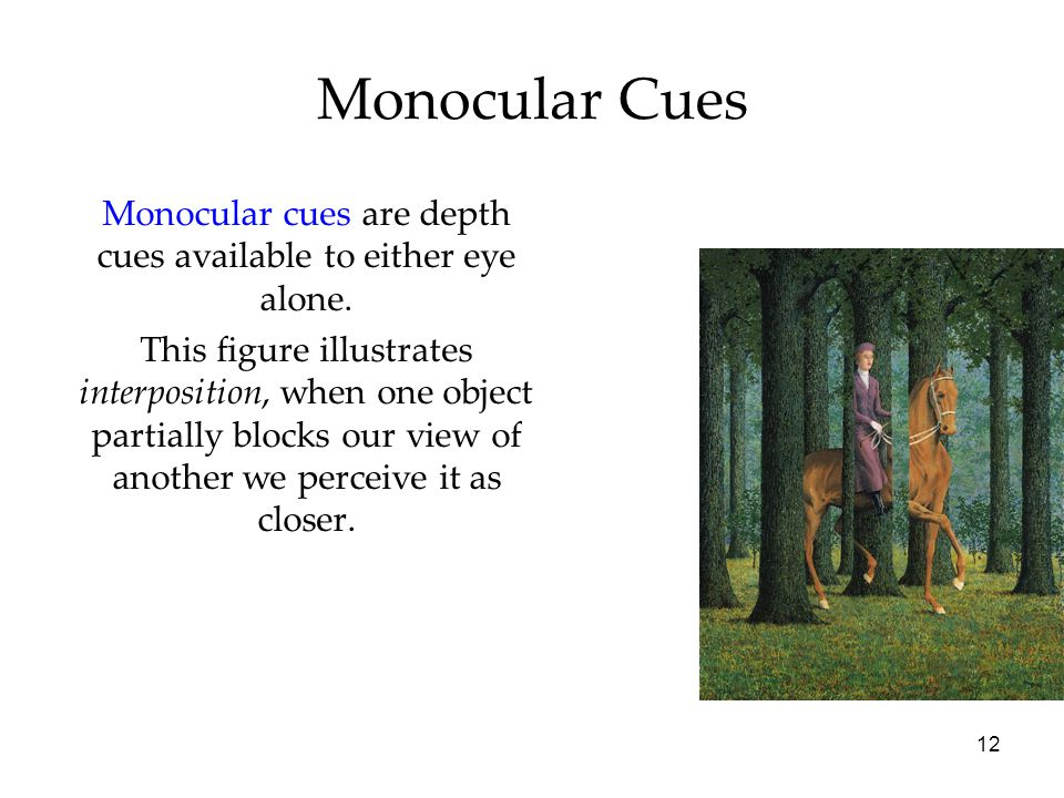 12 Monocular Cues Monocular cues are depth cues available to either eye alone. This figure illustrates interposition, when one object partially blocks