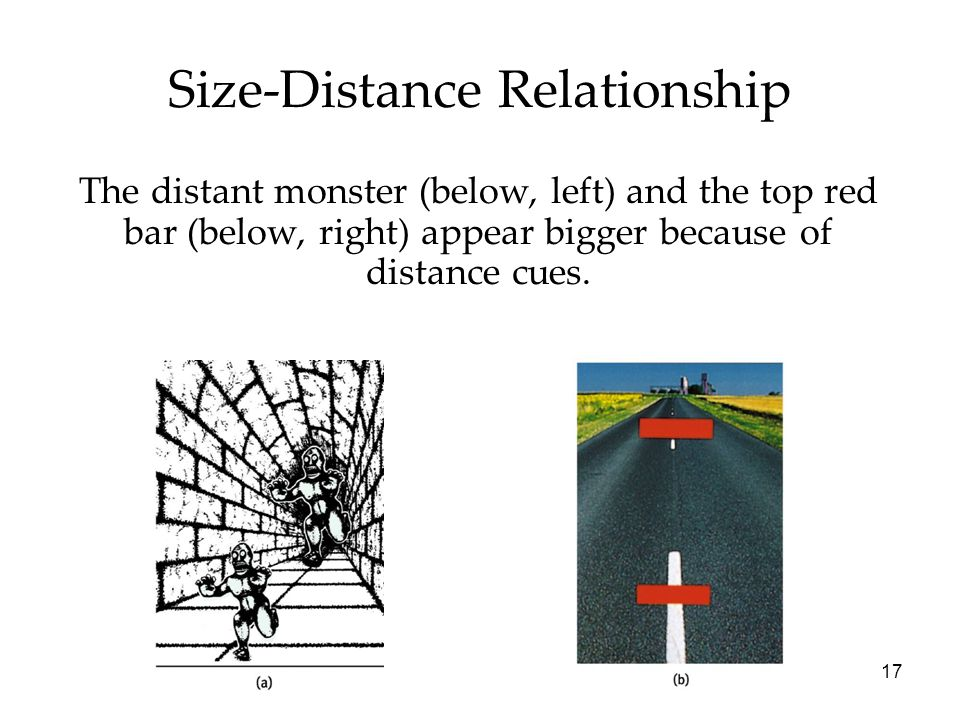 17 Size-Distance Relationship The distant monster (below, left) and the top red bar (below, right) appear bigger because of distance cues.