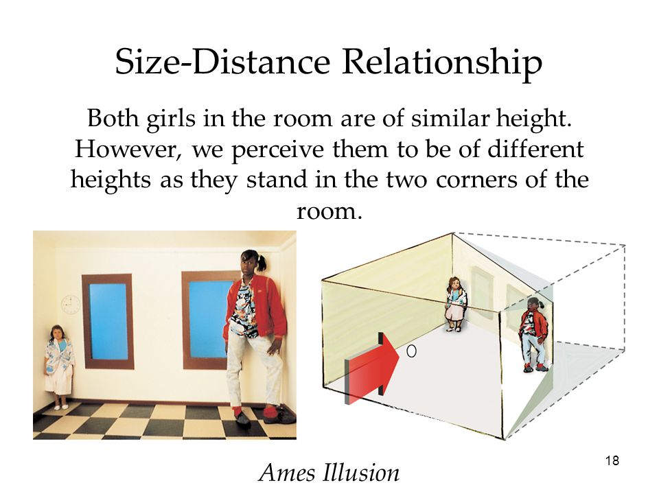 18 Size-Distance Relationship Both girls in the room are of similar height. However, we perceive them to be of different heights as they stand in the
