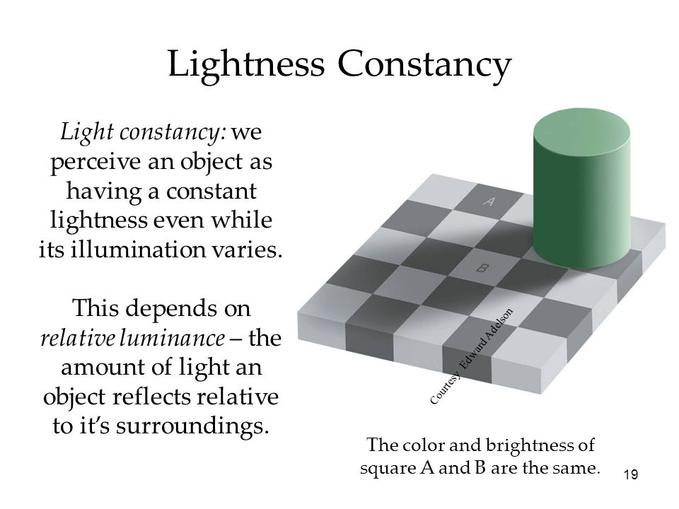 19 Lightness Constancy The color and brightness of square A and B are the same. Courtesy Edward Adelson Light constancy: we perceive an object as havi