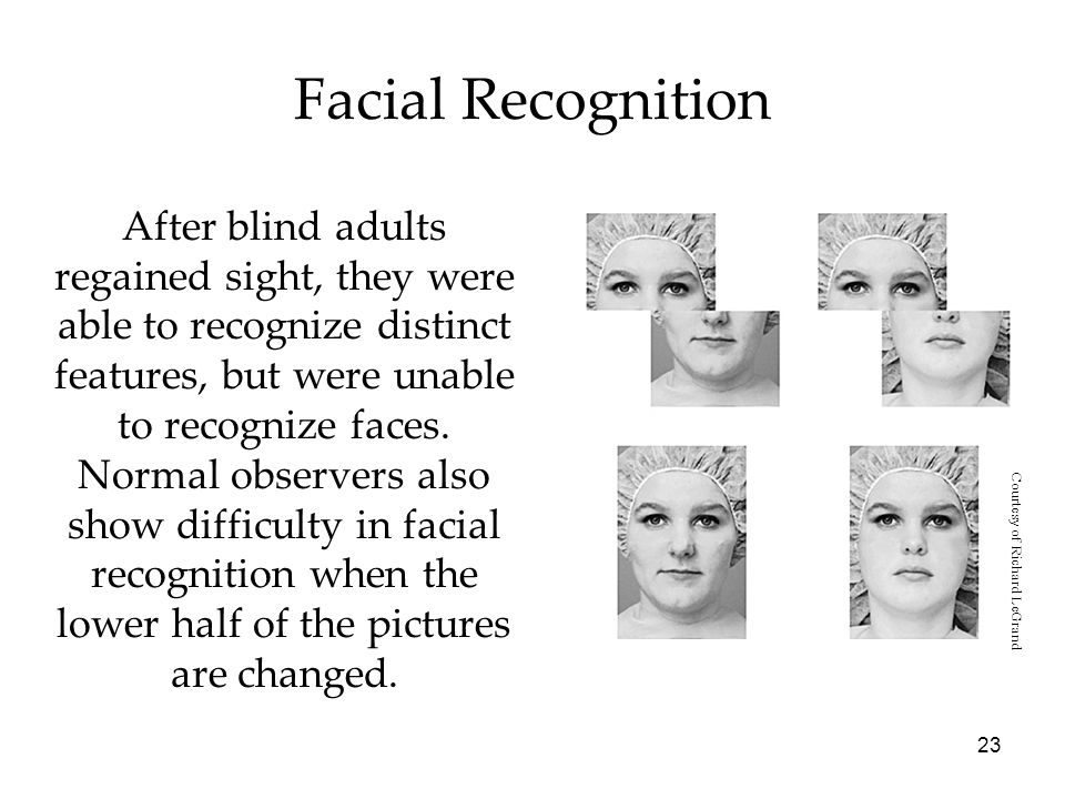 23 Facial Recognition After blind adults regained sight, they were able to recognize distinct features, but were unable to recognize faces.