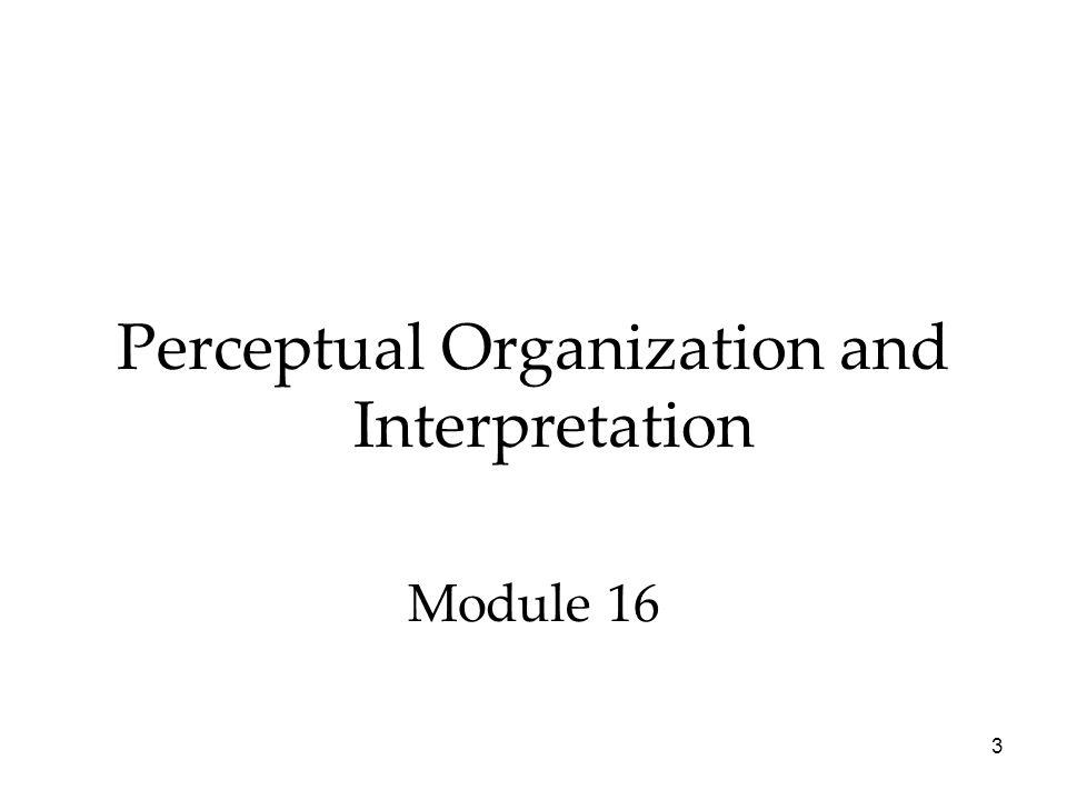 Perceptual Organization and Interpretation Module 16 3