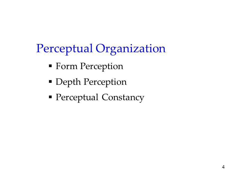 4 Perceptual Organization  Form Perception  Depth Perception  Perceptual Constancy