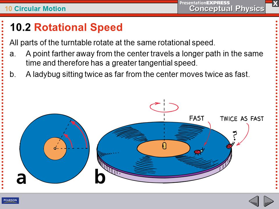 10 Circular Motion All parts of the turntable rotate at the same rotational speed. a.A point farther away from the center travels a longer path in the