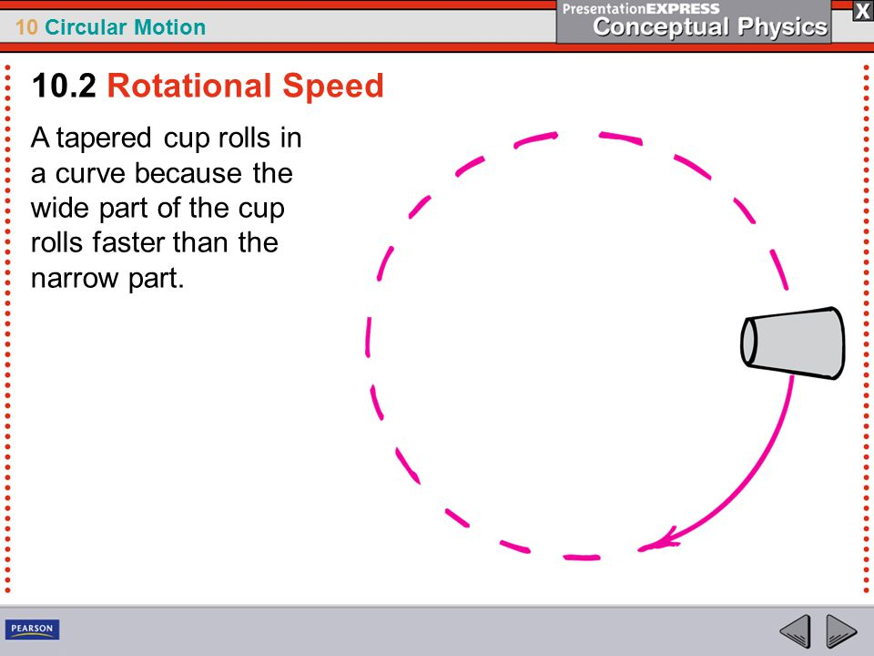 10 Circular Motion A tapered cup rolls in a curve because the wide part of the cup rolls faster than the narrow part.