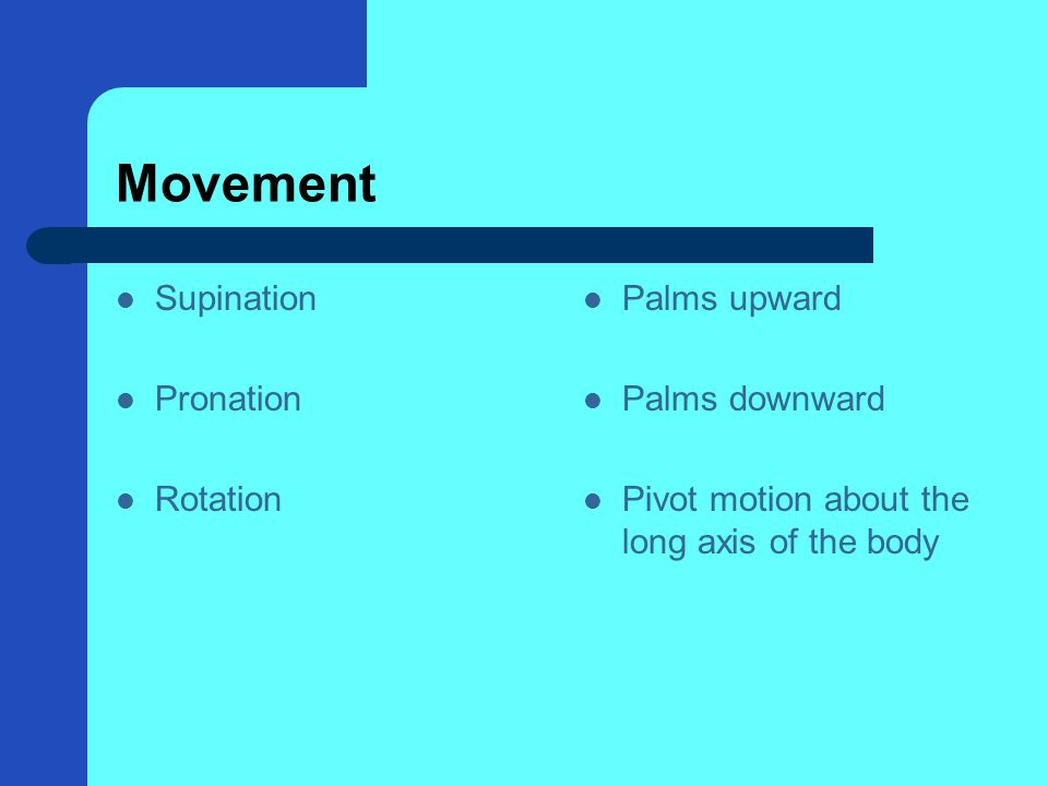 Movement Supination Pronation Rotation Palms upward Palms downward Pivot motion about the long axis of the body
