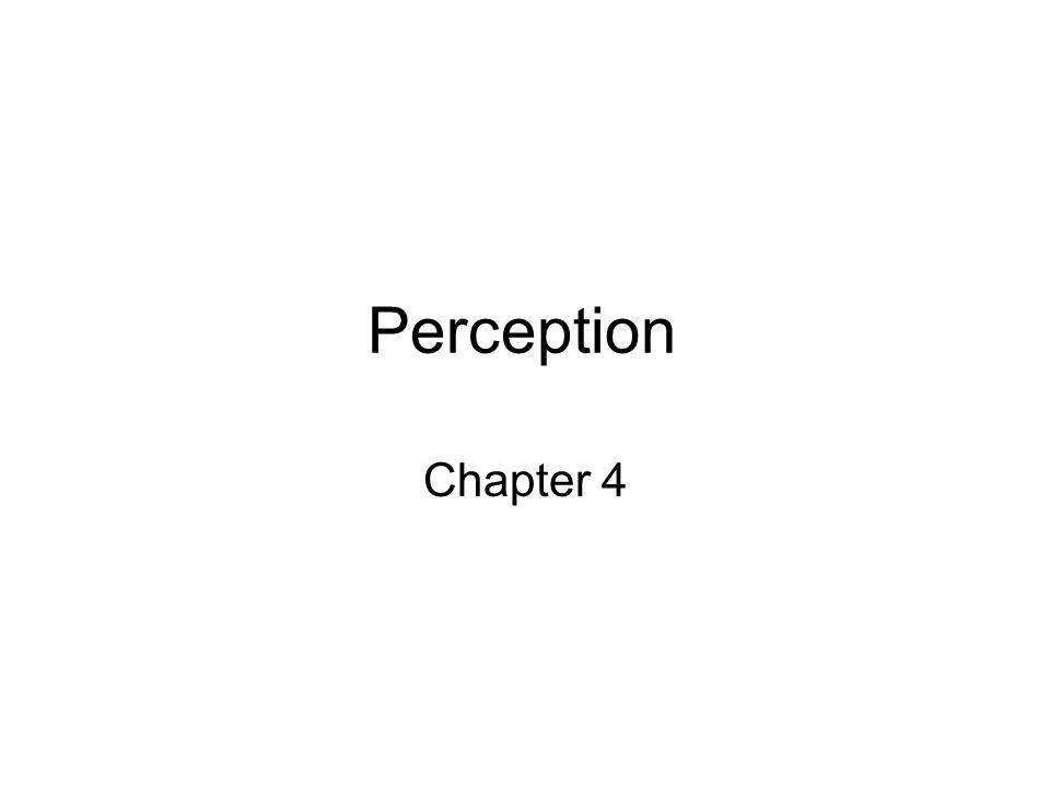 Perception Chapter 4
