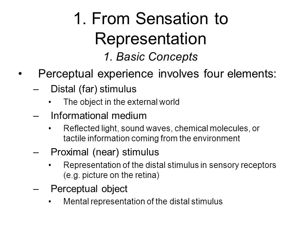 Can you provide an example of perceptual processing of a particular object.