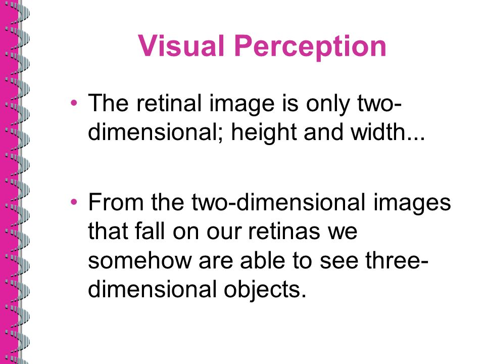 Visual Perception The retinal image is only two- dimensional; height and width... From the two-dimensional images that fall on our retinas we somehow