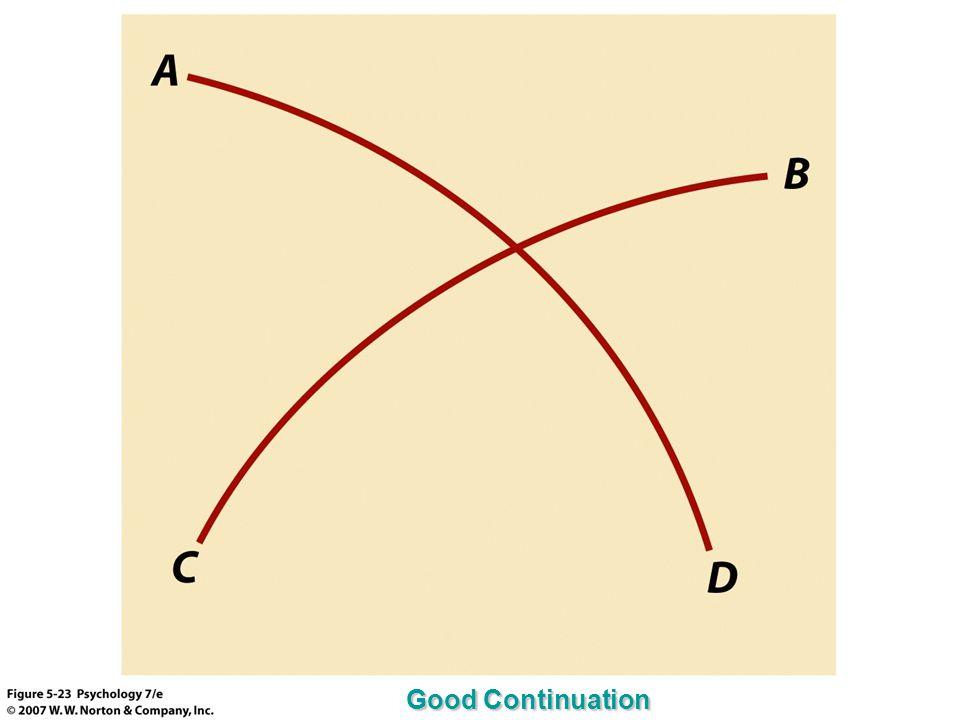 Good Continuation