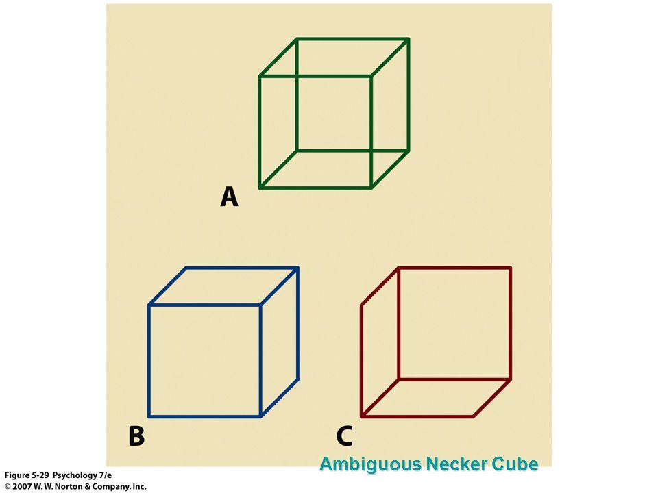 Ambiguous Necker Cube