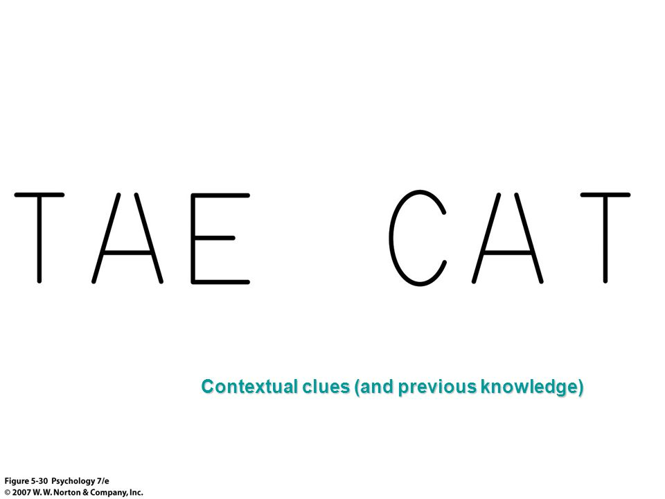 Contextual clues (and previous knowledge)