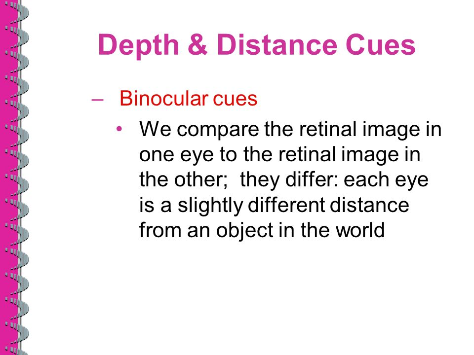 Depth & Distance Cues –Binocular cues We compare the retinal image in one eye to the retinal image in the other; they differ: each eye is a slightly d