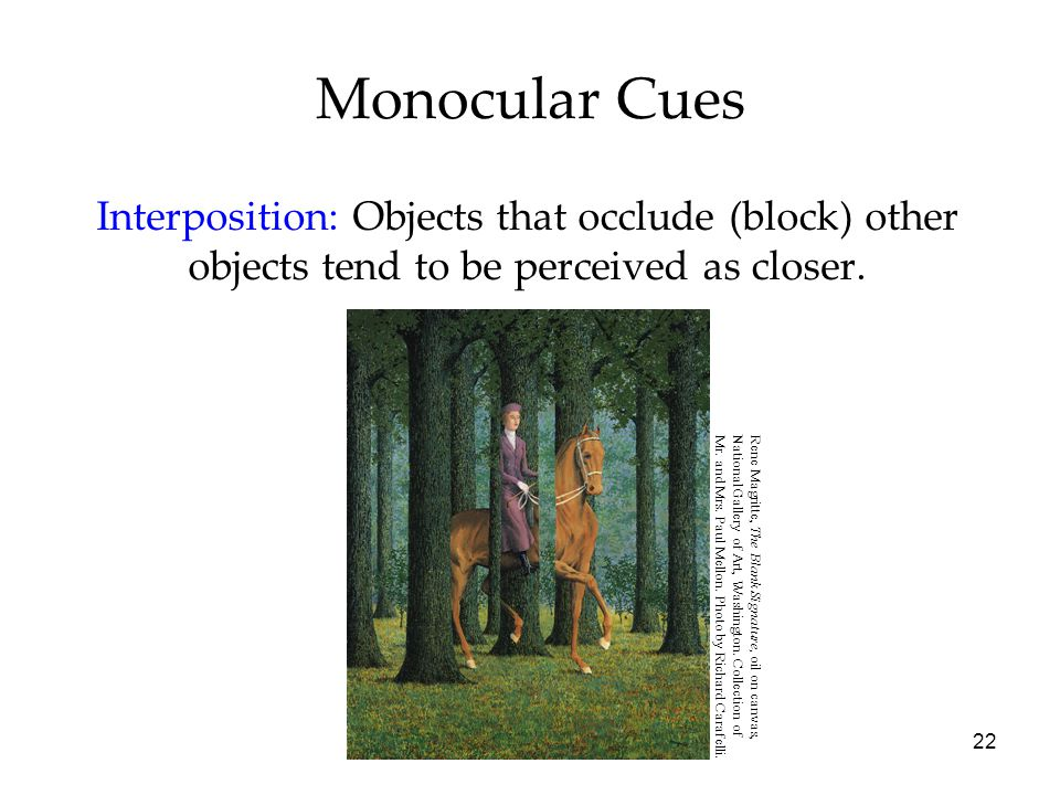 22 Monocular Cues Interposition: Objects that occlude (block) other objects tend to be perceived as closer.