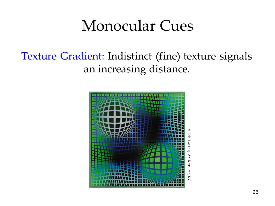 25 Monocular Cues Texture Gradient: Indistinct (fine) texture signals an increasing distance.