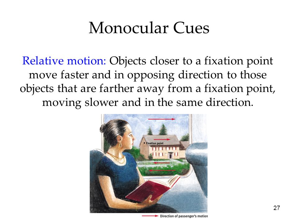 27 Monocular Cues Relative motion: Objects closer to a fixation point move faster and in opposing direction to those objects that are farther away from a fixation point, moving slower and in the same direction.