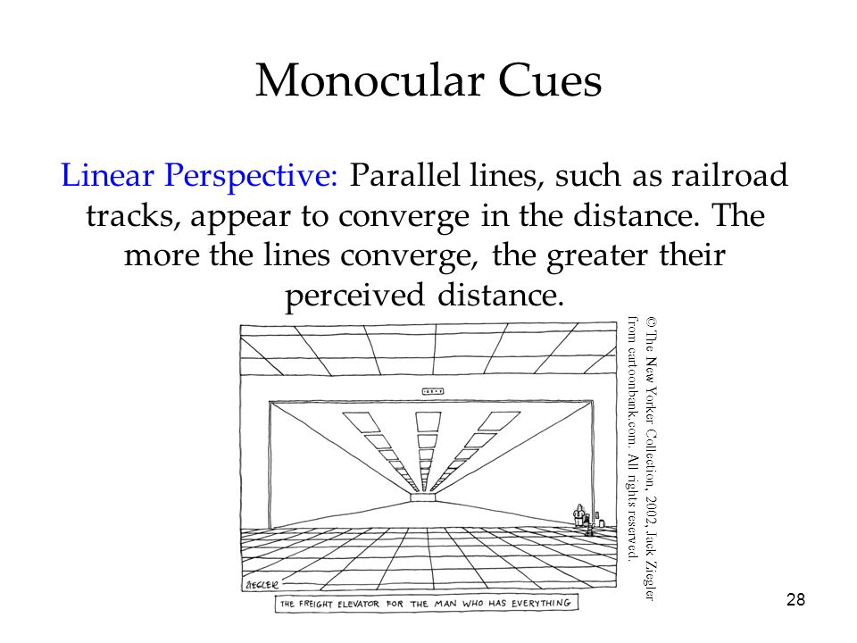 28 Monocular Cues Linear Perspective: Parallel lines, such as railroad tracks, appear to converge in the distance.