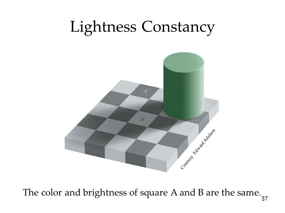 37 Lightness Constancy The color and brightness of square A and B are the same.