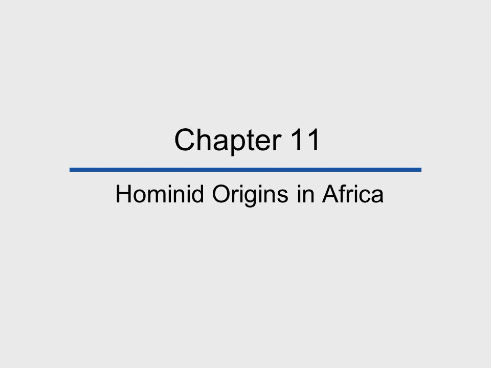 Chapter 11 Hominid Origins in Africa