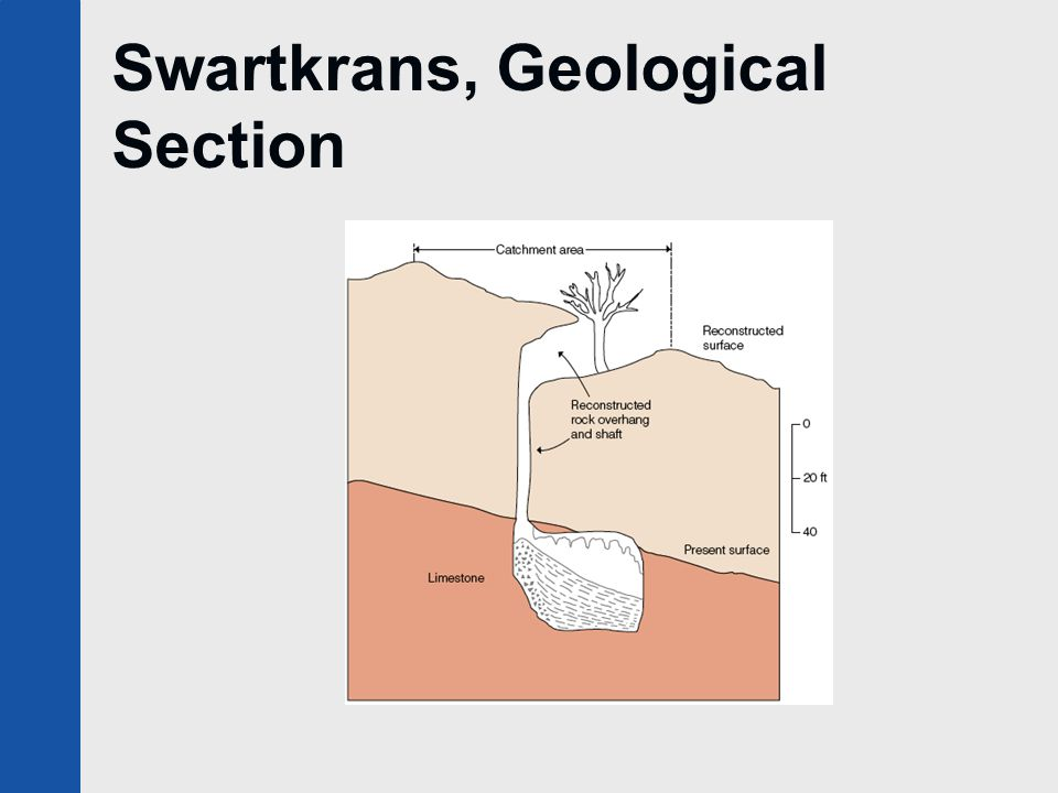 Swartkrans, Geological Section