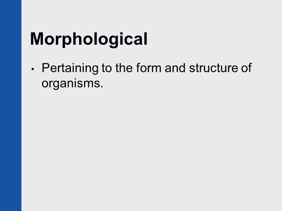 Morphological Pertaining to the form and structure of organisms.
